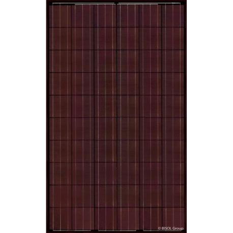Panneau solaire BISOL SPECTRUM BMU-255 rouge