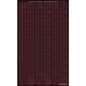 Panneau solaire BISOL SPECTRUM BMU-250 Rouge