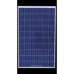 Panneau UNIMEN SOLAR 250P US250P-20