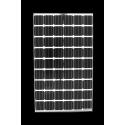 Panneau solaire BISOL BMO-250 Transparent